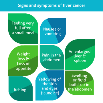 Liver Cancer Hospital in India | Liver Transplant Surgery